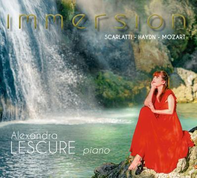 Al immersion cover1 3